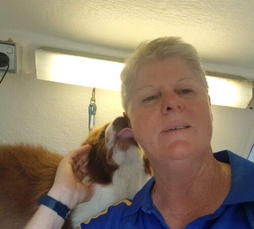 scarborough dog groomer