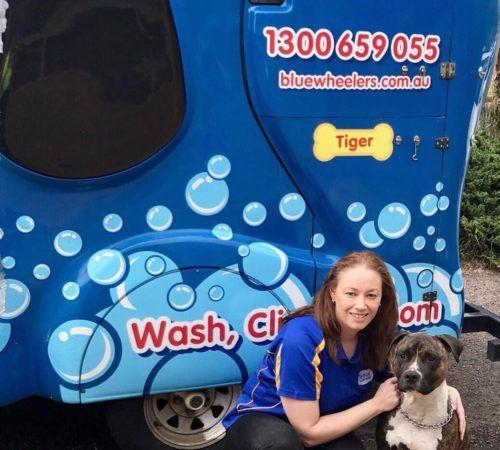 Mobile Dog Grooming Caroline Springs