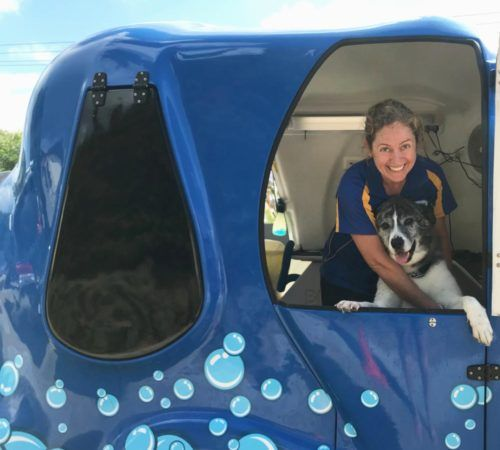 grooming salon, mobile grooming salon, blue dog, dog trailer, mobile dog grooming salon, female groomer, dog groomer, mobile dog groomer, mobile dog wash trailer,