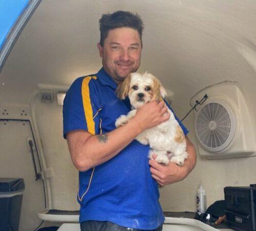 mobile dog grooming hoppers crossing