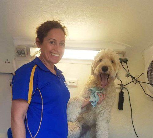 grooming salon, mobile grooming salon, blue dog, dog trailer, mobile dog grooming salon, female groomer, dog groomer, mobile dog groomer, mobile dog wash trailer,