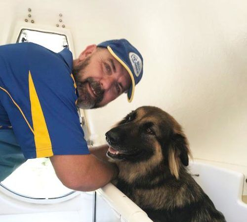 man holding dog, cute dog, groomer holding dog, blue wheelers logo, dog grooming uniform, grooming salon, mobile grooming salon, blue dog, dog trailer, mobile dog grooming salon, male groomer, male dog groomer, dog groomer, cute dogs, mobile dog wash trailer, Blue Wheelers trailer, GSD, German Shepard