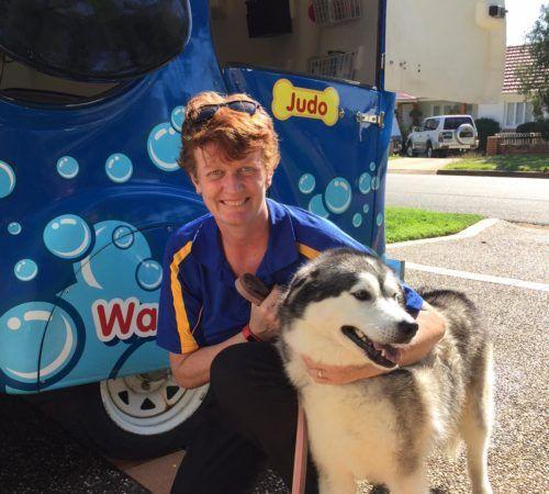 cute dog, woman holding dog, blue wheelers logo, dog grooming uniform, grooming salon, mobile grooming salon, blue dog, dog trailer, mobile dog grooming salon, female groomer, female dog groomer, lady dog groomer, cute dogs, mobile dog wash trailer, mobile dog groomer, cute dogs, dog, dogs, cute puppy, pup, Husky, groomer cuddling a husky