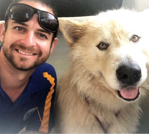 mobile dog groomer, dog groomer Ormeau, fluffy dog , dog grooming, mobile dog grooming
