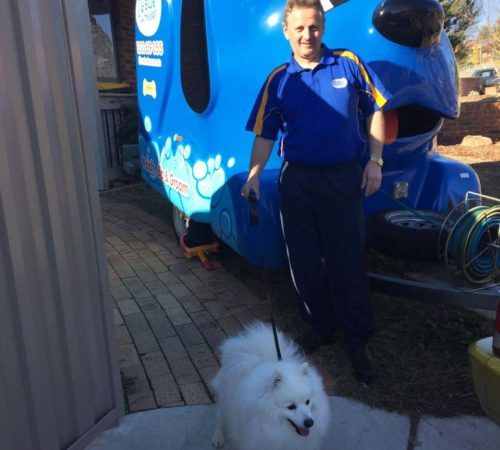groomer holding dog, cute dog, man holding dog, blue wheelers logo, dog grooming uniform, grooming saloon, mobile grooming salon, blue dog, dog trailer, mobile dog grooming salon, male groomer, male dog groomer, dog groomer, cute dogs, mobile dog wash trailer, grooming a dog, groomer
