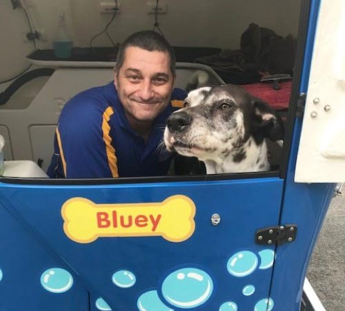 man holding dog, cute dog, groomer holding dog, blue wheelers logo, dog grooming uniform, grooming salon, mobile grooming salon, blue dog, dog trailer, mobile dog grooming salon, male groomer, male dog groomer, dog groomer, cute dogs, mobile dog wash trailer, Blue Wheelers trailer