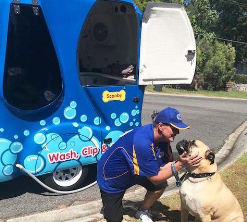 Mobile dog groomer professional dog wash jindalee lady holding dog cute dog woman holding dog blue wheelers logo dog solutioingenieria Images