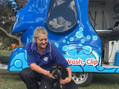 Mobile dog grooming washing services australia wide warm weather dog grooming when the weather gets too hot solutioingenieria Gallery