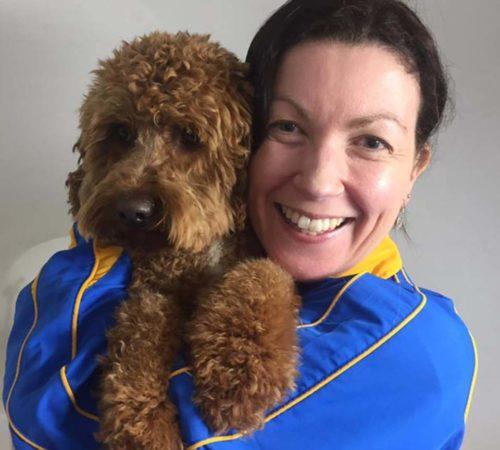 dog groomer Parkdale, dog grooming Parkdale, oodles, groodle, dog grooming, dogs, cute groodle, cute puppies.