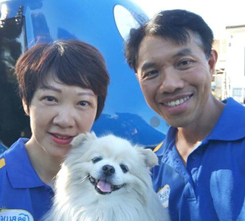 mobile dog groomer, mobile dog washer, Chihuahua, dog grooming burwood