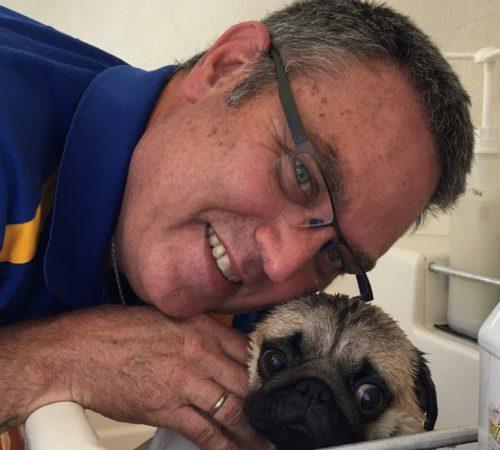 mobile dog groomer, dog groomer, dog grooming upper coomera, pug, cute pug, pugs