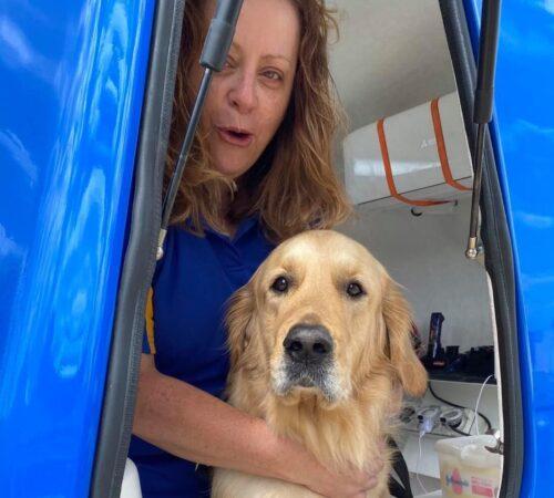 mobile dog grooming landsdale