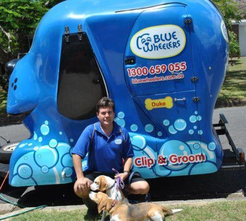 Mobile dog groomer professional dog wash wynnum man holding dog cute dog groomer holding dog blue wheelers logo dog solutioingenieria Images
