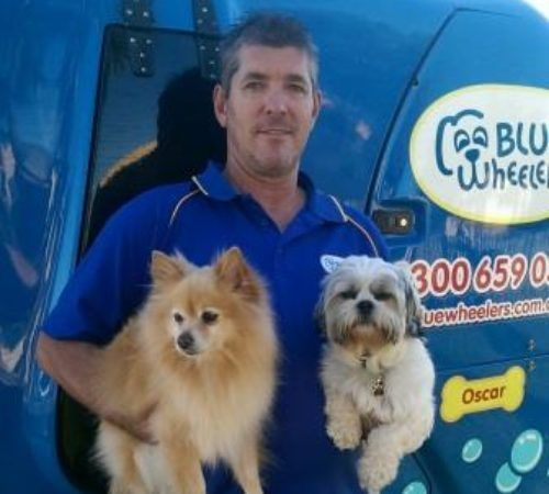man holding dogs, cute dog, groomer holding dog, blue wheelers logo, dog grooming uniform, grooming salon, mobile grooming salon, blue dog, dog trailer, mobile dog grooming salon, male groomer, male dog groomer, dog groomer, cute dogs, mobile dog wash trailer, Blue Wheelers trailer