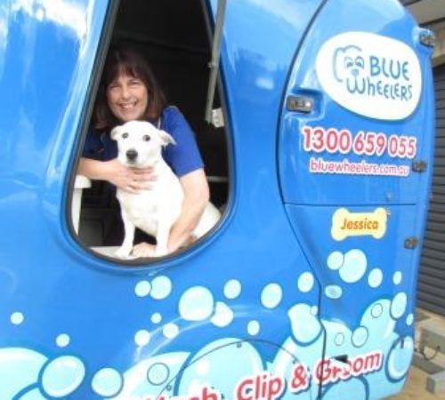 Lady holding dog, cute dog, woman holding dog, blue wheelers logo, dog grooming uniform, grooming salon, mobile grooming salon, blue dog, dog trailer, mobile dog grooming salon, female groomer, female dog groomer, lady dog groomer, cute dogs, mobile dog wash trailer, mobile dog groomer, cute dogs, dog, dogs, cute puppy, pup, groomer grooming dog