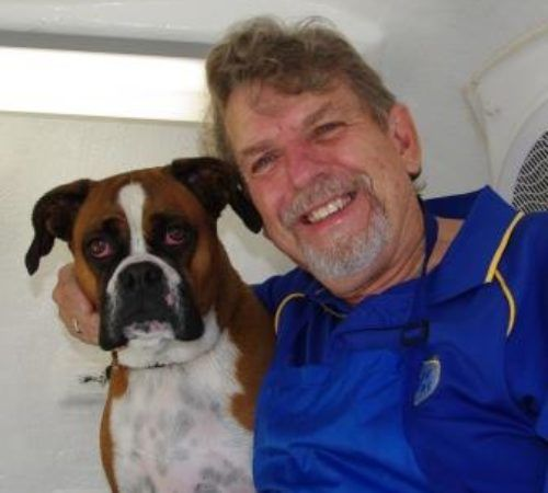 mobile dog groomer, dogs, cute dog, boxer, boxer in a mobile dog grooming trailer, boxer getting groomed, boxer spa day