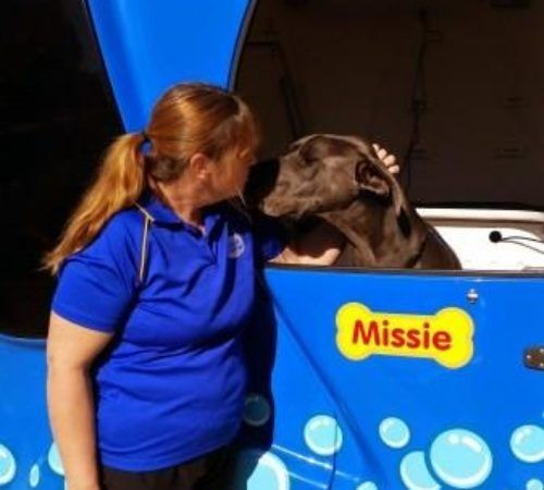 Lady holding dog, cute dog, woman holding dog, blue wheelers logo, dog grooming uniform, grooming salon, mobile grooming salon, blue dog, dog trailer, mobile dog grooming salon, female groomer, female dog groomer, lady dog groomer, cute dogs, mobile dog wash trailer, groomer cuddling dog