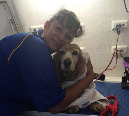 groomer hugging a dog, dog, cute dog, dog in a grooming trailer, dog inside of mobile salon, doggies, dog wash