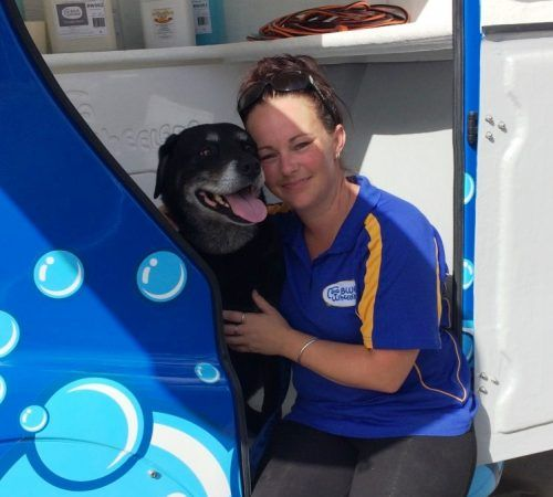 Lady holding dog, cute dog, woman holding dog, blue wheelers logo, dog grooming uniform, grooming salon, mobile grooming salon, blue dog, dog trailer, mobile dog grooming salon, female groomer, female dog groomer, lady dog groomer, cute dogs, mobile dog wash trailer, mobile dog groomer, cute dogs, dog, dogs, cute puppy, pup, Rottweiler x Lab
