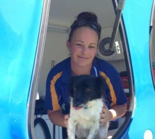 Mobile dog groomer professional dog wash georgetown lady holding dog cute dog woman holding dog blue wheelers logo dog solutioingenieria Choice Image