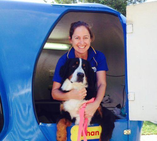 grooming salon, mobile grooming salon, blue dog, dog trailer, mobile dog grooming salon, female groomer, dog groomer, mobile dog groomer, mobile dog wash trailer, border collie