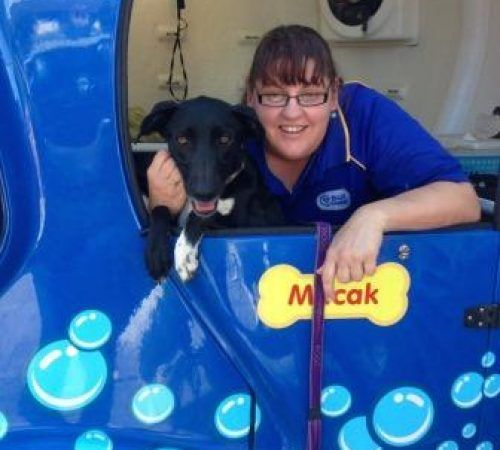 mobile dog groomer cuddling a cute dog, cute dog in a mobile dog grooming trailer, mobile dog groomer, grooming trailer, dog with a mobile dog groomer, black dog, dog