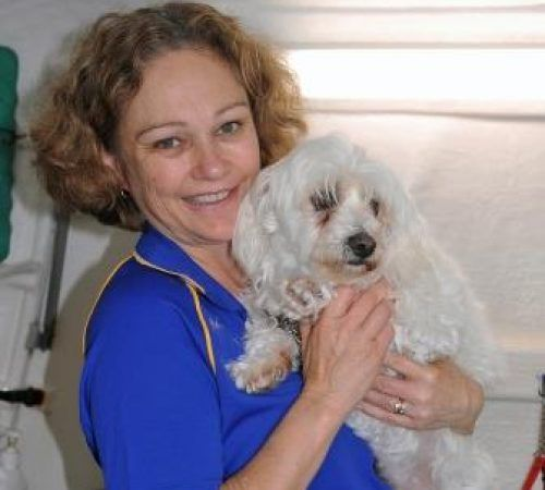 Lady holding dog, cute dog, woman holding dog, blue wheelers logo, dog grooming uniform, grooming salon, mobile grooming salon, blue dog, dog trailer, mobile dog grooming salon, female groomer, female dog groomer, lady dog groomer, cute dogs, mobile dog wash trailer, mobile dog groomer, cute dogs, dog, dogs, cute puppy, pup