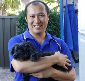 Rowville Dog Grooming