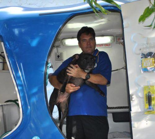 man holding dog, cute dog, groomer holding dog, blue wheelers logo, dog grooming uniform, grooming salon, mobile grooming salon, blue dog, dog trailer, mobile dog grooming salon, male groomer, male dog groomer, dog groomer, cute dogs, mobile dog wash trailer, Blue Wheelers trailer