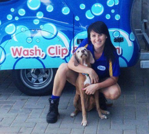 Mobile dog groomer professional dog wash halls head lady holding dog cute dog woman holding dog blue wheelers logo dog dog grooming solutioingenieria Choice Image
