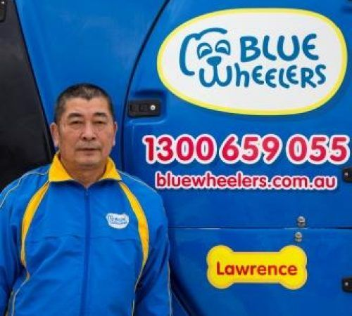 , blue wheelers logo, dog grooming uniform, grooming salon, mobile grooming salon, blue dog, dog trailer, mobile dog grooming salon, male groomer, male dog groomer, dog groomer,