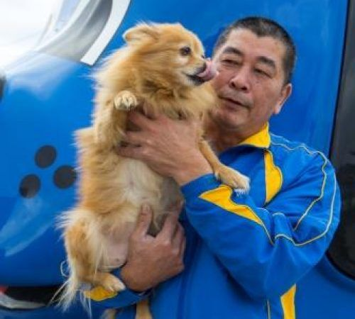 man holding dog, cute dog, groomer holding dog, male groomer, male dog groomer, dog groomer, cute dogs, groomer holding a Pomeranian, Pomeranian, man carrying a Pomeranian