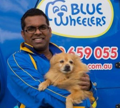 man holding dog, cute dog, groomer holding dog, male groomer, male dog groomer, dog groomer, cute dogs, groomer holding a Pomeranian, Pomeranian, man carrying a Pomeranian